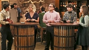 The Big Bang Theory Season 9 Episode 22