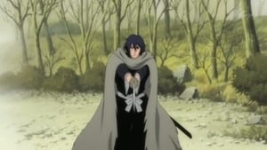 Yachiru's Friend! The Shinigami of Justice Appears!