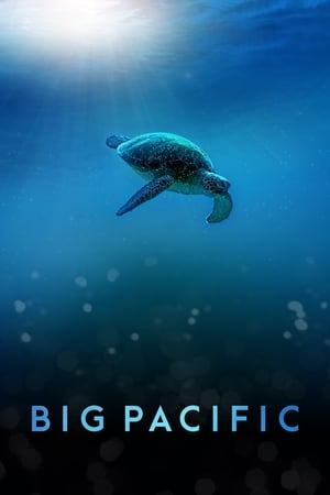 Watch Big Pacific Full Movie