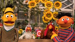 Sesame Street Season 49 :Episode 30  Counting Critters