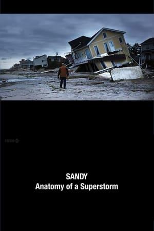 Sandy: Anatomy of a Superstorm