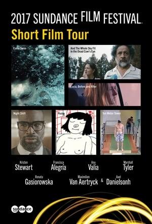 2017 Sundance Film Festival Short Film Tour