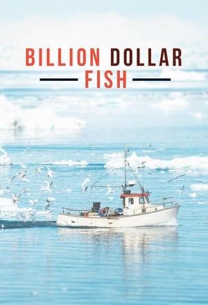 Billion Dollar Fish