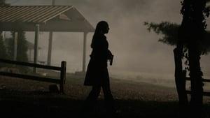 Online Fringe Sezonul 1 Episodul 4 The Arrival