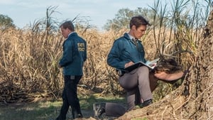 Capture True Detective Saison 1 épisode 1 streaming