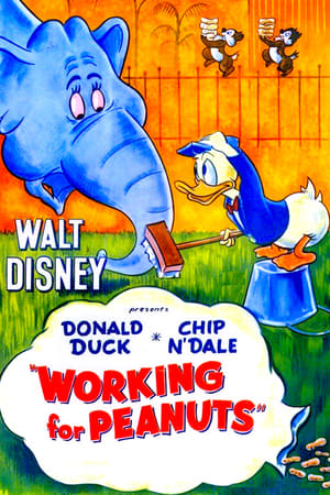 Les Cacahuètes de Donald