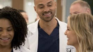 Grey's Anatomy Season 14 Episode 13