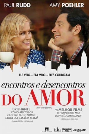 Encontros e Desencontros do Amor Torrent, Download, movie, filme, poster