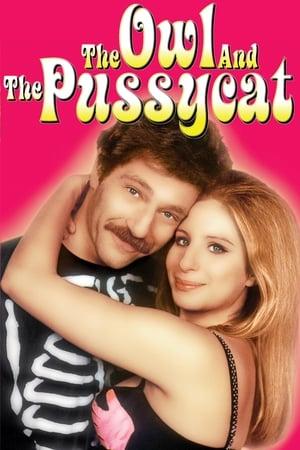La chouette et le pussycat