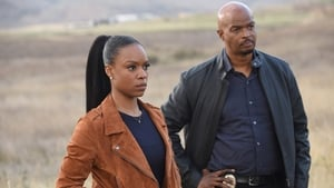 Lethal Weapon Season 3 :Episode 13  Coyote Ugly