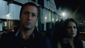 Hawaii 5-0 saison 3 episode 24