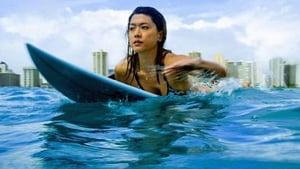 Hawaii 5-0 saison 5 episode 3