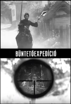 Büntetöexpedíció