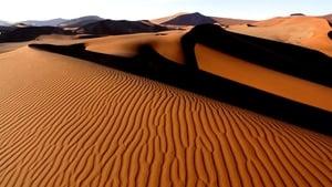 Captura de Planeta Tierra 1×05 – Desiertos