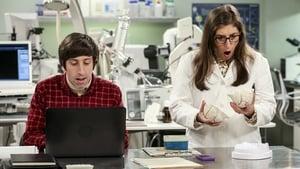 The Big Bang Theory: 11×5