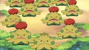 Pokémon Season 7 :Episode 42  A Shroomish Skirmish