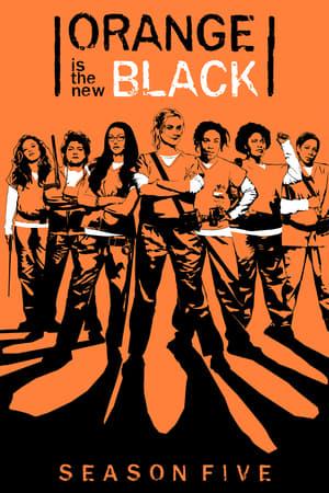 Regarder Orange Is the New Black Saison 5 Streaming