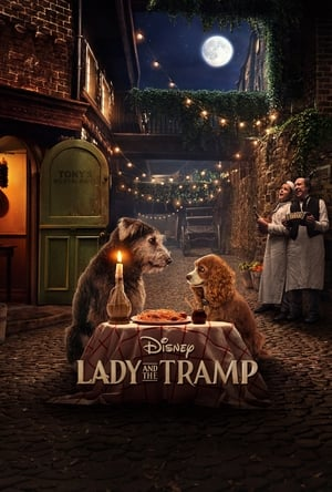 Watch Lady and the Tramp Full Movie