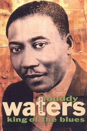 A Tribute to Muddy Waters - King of the Blues