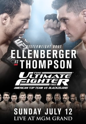 The Ultimate Fighter 21 Finale (2015)