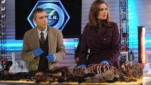 Bones Season 7 : The Suit on the Set