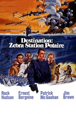 Destination : Zebra, station polaire