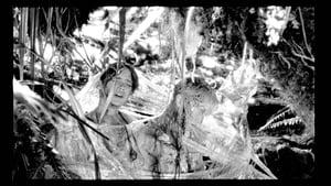Les Garçons Sauvages Streaming HD