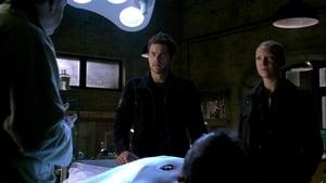 Online Fringe Sezonul 2 Episodul 4 Episodul 4