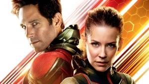 Captura de Ver Ant-Man y la Avispa Online Pelicula Completa 2018 HD