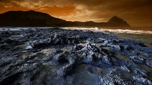 Life and Death on the Red Planet
