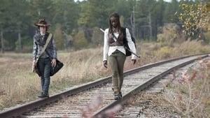 The Walking Dead: 4×15