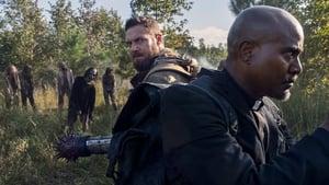 The Walking Dead Season 10 :Episode 19  One More