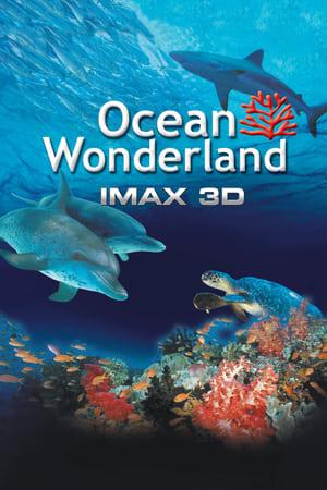 Ocean Wonderland (2003)