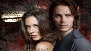 Academia de Vampiros: O Beijo das Sombras