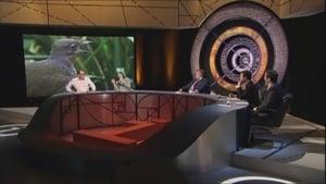 QI Season 6 : Fakes and Frauds