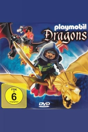 Playmobil: Guardians of the Dragon Fires
