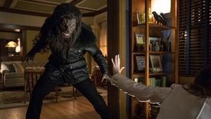 Grimm Season 4 : Maréchaussée