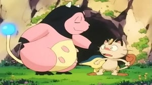 Pokémon Season 4 : Got Miltank?