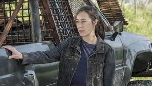 Fear the Walking Dead Season 5 : Channel 4