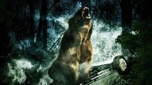 Bear (2010) Poster