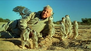 Attenborough's Life Stories: Part Two - Understanding the Natural World