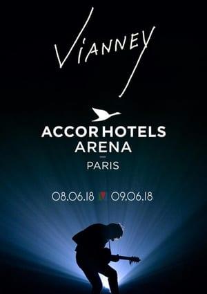 Vianney en concert à l'AccorHotels Arena 2018