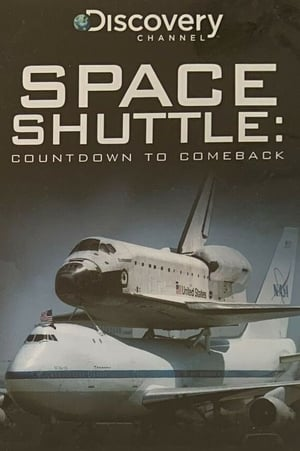 The Space Shuttle: Countdown to Comeback
