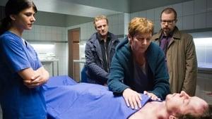 Scene of the Crime Season 41 :Episode 4  Episode 4