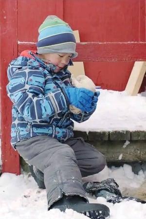 Watch A Polar Year Full Movie