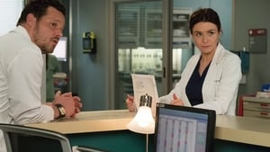 watch Grey's Anatomy online Ep-23 full