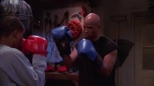 Papa Said Knock You Out
