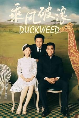 Duckweed (2017)