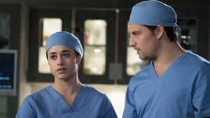 Grey's Anatomy Season 14 : Beautiful Dreamer