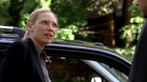Online Fringe Sezonul 2 Episodul 3 Episodul 3